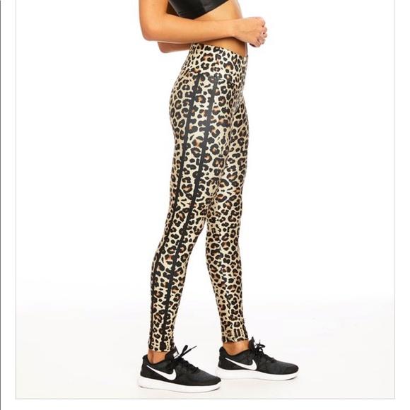 0e063228b683d2 Goldsheep Pants | Classic Leopard Leggings | Poshmark